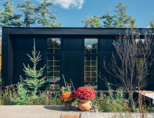 Casa singular en el bosque